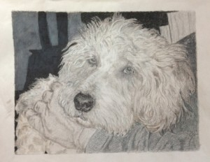 Gray Colored Pencil Course at Pastimes for a Lifetime