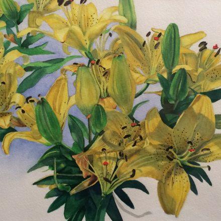 "Vina Curtis: ""A Parade of Lilies"""