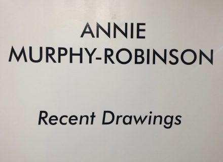 Annie Murphy Robinson Recent Drawings